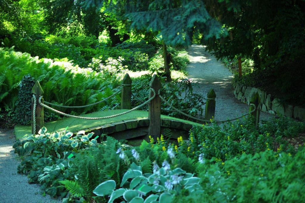 Arboretum Wojsławice - mostek