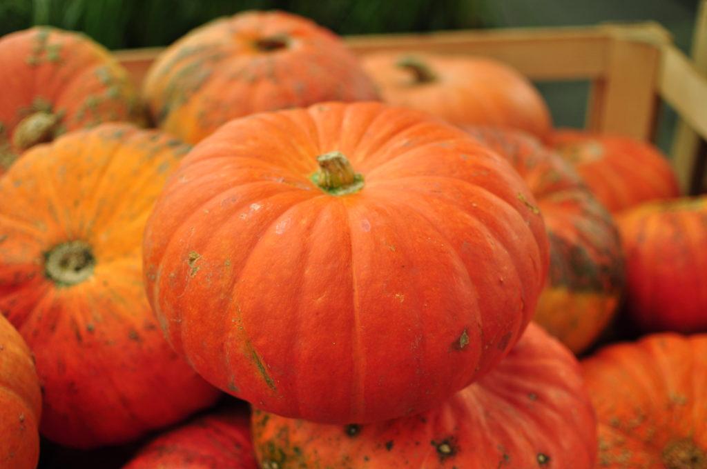 Dynie halloweenowe na targach