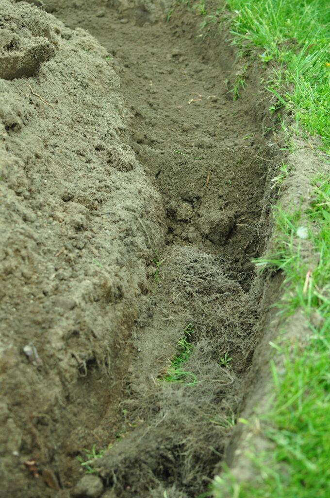 Podłoże przygotowane warstwowo do sadzenia bukszpanu.